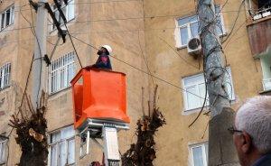 Dicle Elektrik'ten kuş kurtarma operasyonu!