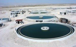 Türkiye Şeker Fabrikaları atık su arıtım tesisi işlettirecek