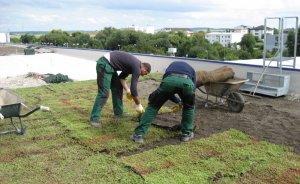 ÇATIDER: Yeşil çatı uygulamaları arttırılmalı