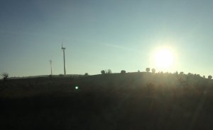 Ordu'da Kamelya'ya 40, Bayır RES'e 10 MW izin