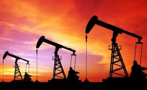 Mayıs'ta ham petrol ithalatı arttı