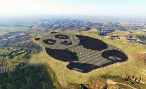 Çin'de Panda GES kuruldu!
