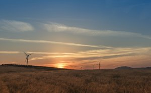 YEKA rüzgar ihalesi 3.48 cent ile Siemens'in!