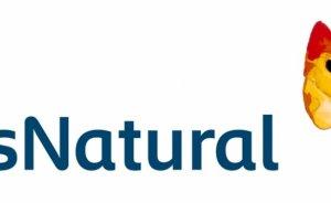 İspanyol Gas Natural gaz dağıtım şirketinden hisse sattı