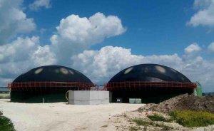 Tükenmez yerli enerjimiz: Biyokütle! - Mehmet KARA
