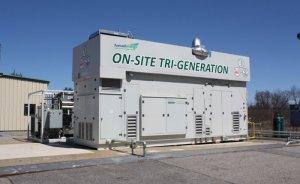 Toyota Kaliforniya'nın tarımsal atıklarını elektriğe çevirecek