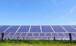 Shell'den Amerikan güneş enerjisine yatırım