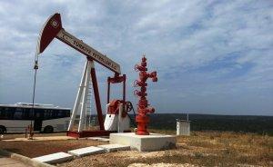 TPAO'dan beş petrol arama başvurusu