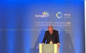 Avrupa karbon salımı yeşil gaz ile hızla azaltılabilir