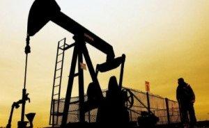 Diyarbakır'da 4 petrol arama başvurusuna red