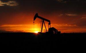 Umman'ın ham petrol üretimi geçen yıl yüzde 3.4 azaldı