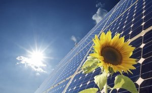 Bodrum'da güneş enerjisinin turizme katkısı değerlendirildi