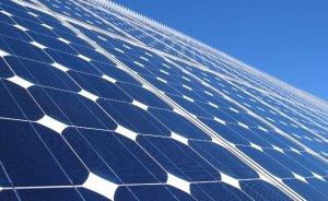 Apple enerjisini güneş çiftliğinden alacak