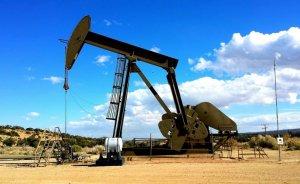 Arar Petrol'ün 4 arama ruhsatı başvurusuna ret!