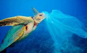 Bir Güzel Hareketle plastik kullanımını azaltın!
