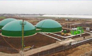 Başeğmezler: Türkiye'nin biyogaz potansiyeli 35 milyar kilovatsaat