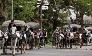 Adalar'a elektrikli arabalar da gelmesin - Haluk DİRESKENELİ