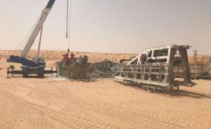 İngiliz Savannah Nijer'de petrol keşfetti