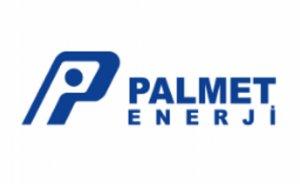 Palmet Enerji 2.354.000 lira faiz ödedi
