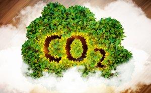 Çin'in karbon emisyonu % 3 arttı