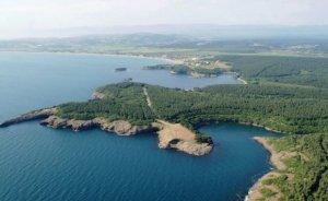 Japonlardan Sinop NGS'den vazgeçilmedi açıklaması