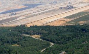 RWE'nin Hambach Ormanlarını koruması maliyetli olacak