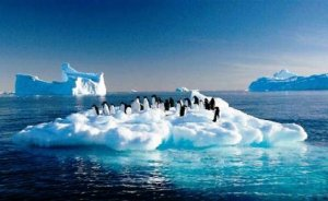 En büyük küresel tehdit iklim değişikliği