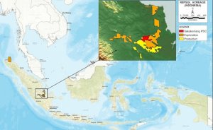 Repsol Endonezya'da dev gaz sahası keşfetti