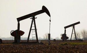 TPAO petrol arama ruhsatını terk etti