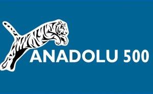 CW Enerji, Anadolu 500 listesinde 188'inci oldu