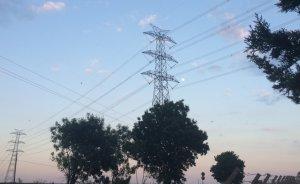 Mardin Mazıdağı'nda elektrik iletim hattı için kamulaştırma yapılacak