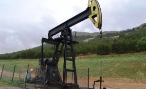 Arar Petrol, üç ruhsatını İsviçreli DMLP`ye devretti