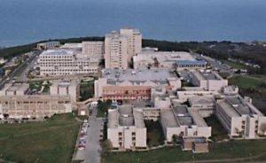 Sinop Üniversitesi nükleer uzmanı profesör arıyor