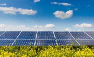 Yayla Enerji'nin ilk çeyrek karı 1,6 milyon lira