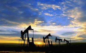 Transatlantic Exploration Ltd Diyarbakır'da petrol işletme ruhsatı istedi