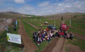 TANAP'tan Ankara'ya 50 bin ağaç