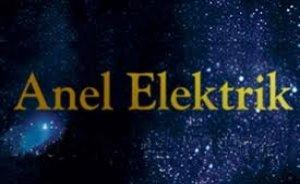 Anel Elektrik`e, En Hızlı Büyüme ödülü