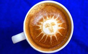 Kafeinli güneş panelleri ışığı yüzde 3 fazla yakalıyor