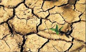 Hindistan'da son 30 yılın en büyük su krizi