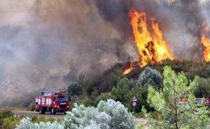 Orman Yangınları ve iklim değişikliği - H. Zafer ARIKAN yazdı
