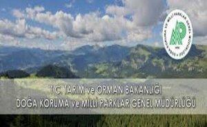 123 STK: Doğa Koruma ve Milli Parklar Genel Müdürlüğü kapatılmasın!