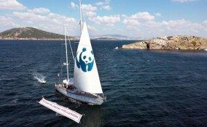 İstanbul'un Adaları'nda deniz plastikten arındırılacak