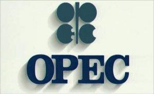OPEC Petrol Sepeti geriledi