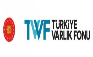 Çin'den Türkiye Varlık Fonu'nun enerji yatırımlarına destek