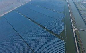 Çin'deki 320 MW'lık GES balıkçılığı da geliştiriyor