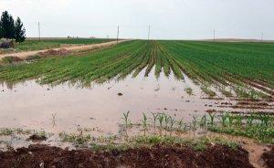 Tarımda doğru sulama enerji faturasını yarı yarıya düşürüyor