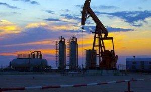 Türk şirkeleri için Kazakistan tecrübesi - Haluk DİRESKENELİ