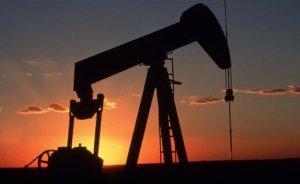 Bir petrol arama ruhsatı satıldı