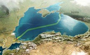 TürkAkım gazının yaşam döngüsü üzerine - Filiz KARAOSMANOĞLU yazdı