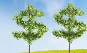 Yeşil finansman yüzde 47 arttı